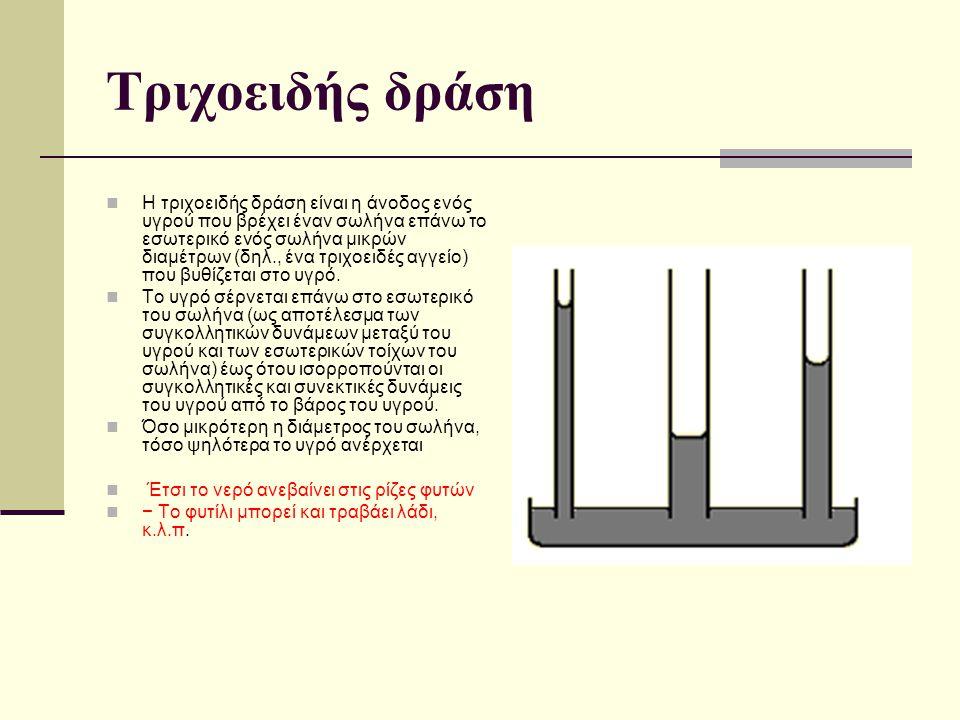 Τριχοειδής δράση Η τριχοειδής δράση είναι η άνοδος ενός υγρού που βρέχει έναν σωλήνα επάνω το εσωτερικό ενός σωλήνα μικρών διαμέτρων (δηλ., ένα τριχοε