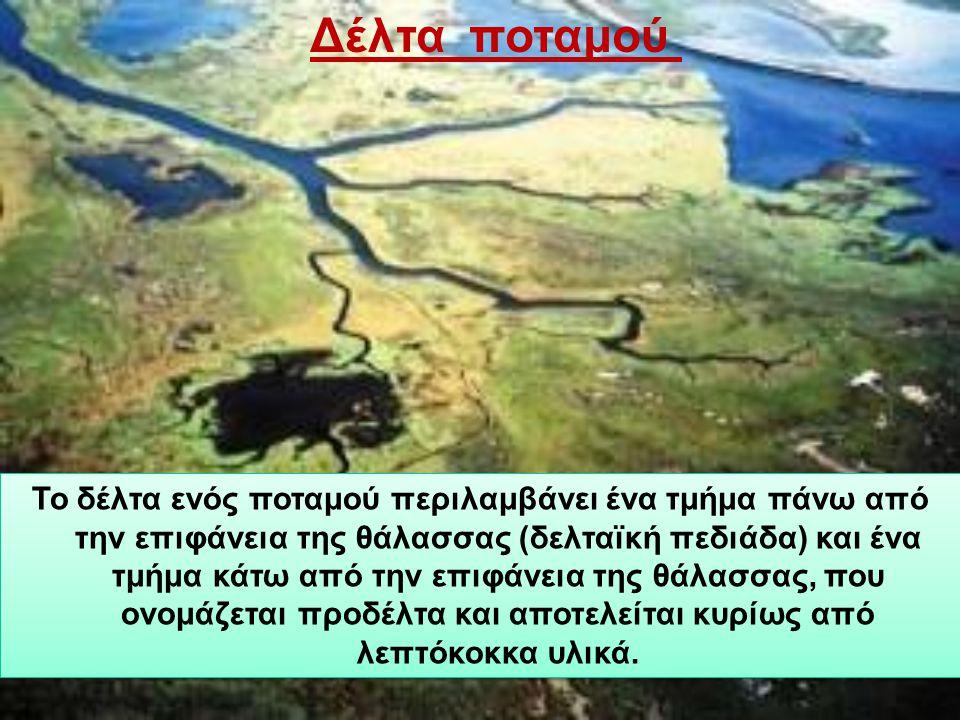 Το δέλτα ενός ποταμού περιλαμβάνει ένα τμήμα πάνω από την επιφάνεια της θάλασσας (δελταϊκή πεδιάδα) και ένα τμήμα κάτω από την επιφάνεια της θάλασσας, που ονομάζεται προδέλτα και αποτελείται κυρίως από λεπτόκοκκα υλικά.