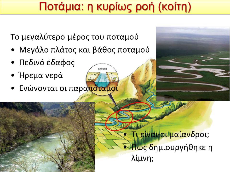 Ποτάμια: η κυρίως ροή (κοίτη) Το μεγαλύτερο μέρος του ποταμού Μεγάλο πλάτος και βάθος ποταμού Πεδινό έδαφος Ήρεμα νερά Ενώνονται οι παραπόταμοι Τι είναι οι μαίανδροι; Πώς δημιουργήθηκε η λίμνη;