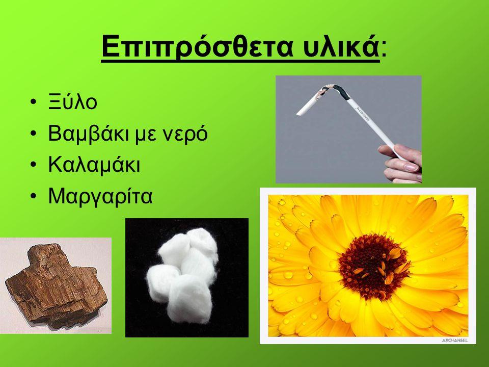 Επιπρόσθετα υλικά: Ξύλο Βαμβάκι με νερό Καλαμάκι Μαργαρίτα