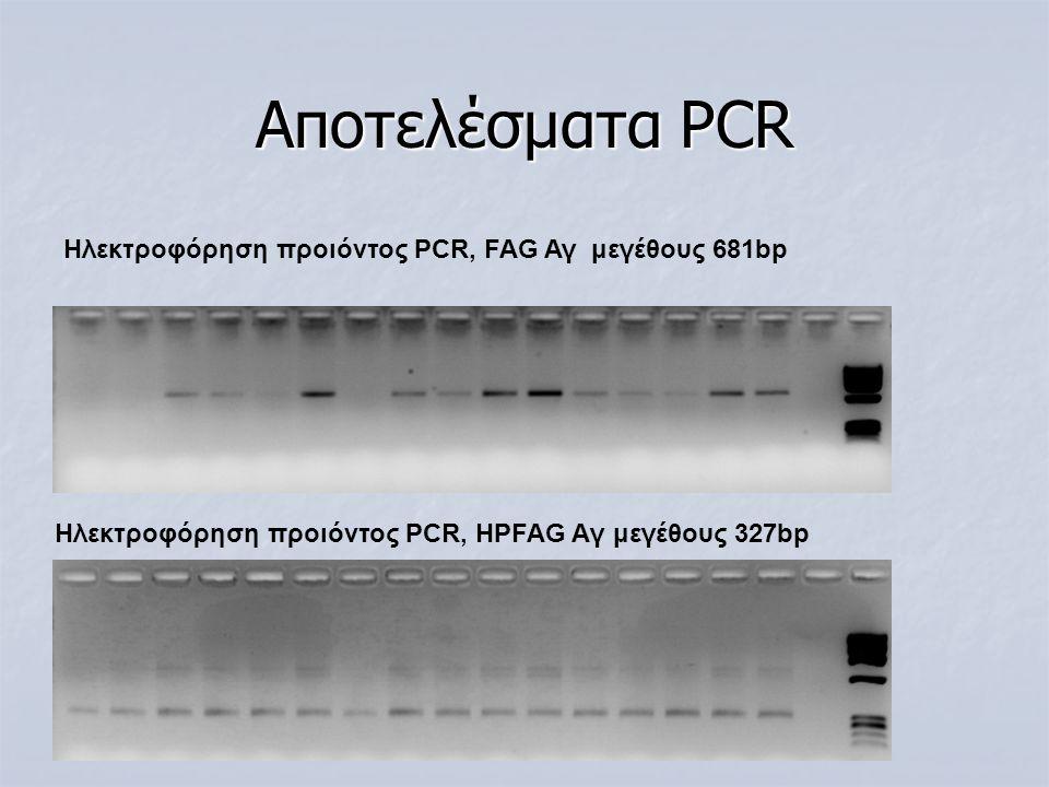 Αποτελέσματα PCR Hλεκτροφόρηση προιόντος PCR, ΗPFAG Aγ μεγέθους 327bp Hλεκτροφόρηση προιόντος PCR, FAG Αγ μεγέθους 681bp