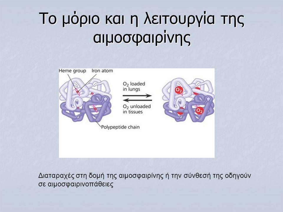 Το μόριο και η λειτουργία της αιμοσφαιρίνης Διαταραχές στη δομή της αιμοσφαιρίνης ή την σύνθεσή της οδηγούν σε αιμοσφαιρινοπάθειες