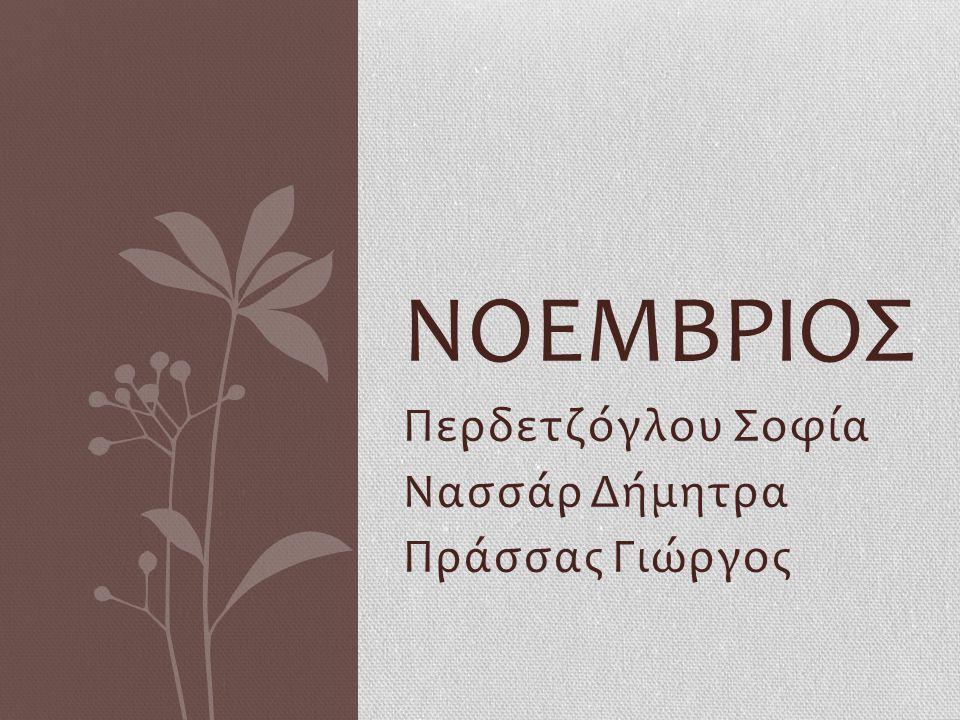 Περδετζόγλου Σοφία Νασσάρ Δήμητρα Πράσσας Γιώργος ΝΟΕΜΒΡΙΟΣ