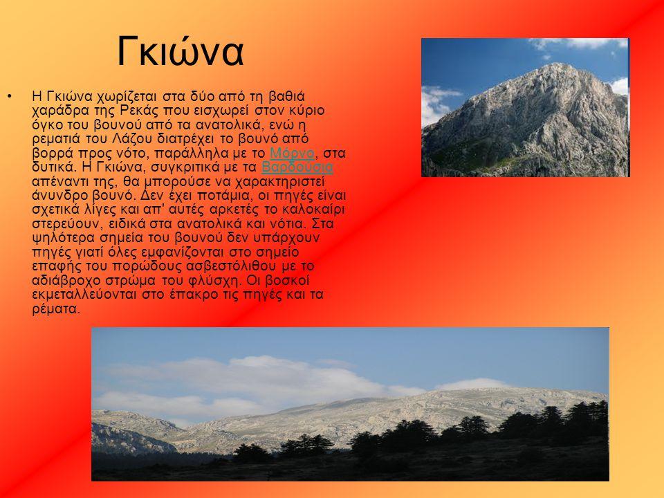Γκιώνα Η Γκιώνα χωρίζεται στα δύο από τη βαθιά χαράδρα της Ρεκάς που εισχωρεί στον κύριο όγκο του βουνού από τα ανατολικά, ενώ η ρεματιά του Λάζου δια
