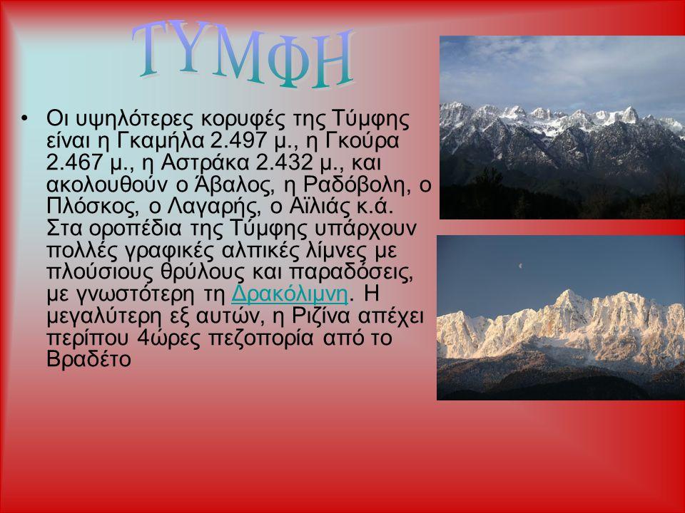 Οι υψηλότερες κορυφές της Τύμφης είναι η Γκαμήλα 2.497 μ., η Γκούρα 2.467 μ., η Αστράκα 2.432 μ., και ακολουθούν ο Άβαλος, η Ραδόβολη, ο Πλόσκος, ο Λα