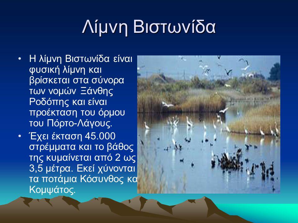 Λίμνη Βιστωνίδα Η λίμνη Βιστωνίδα είναι φυσική λίμνη και βρίσκεται στα σύνορα των νομών Ξάνθης Ροδόπης και είναι προέκταση του όρμου του Πόρτο-Λάγους.