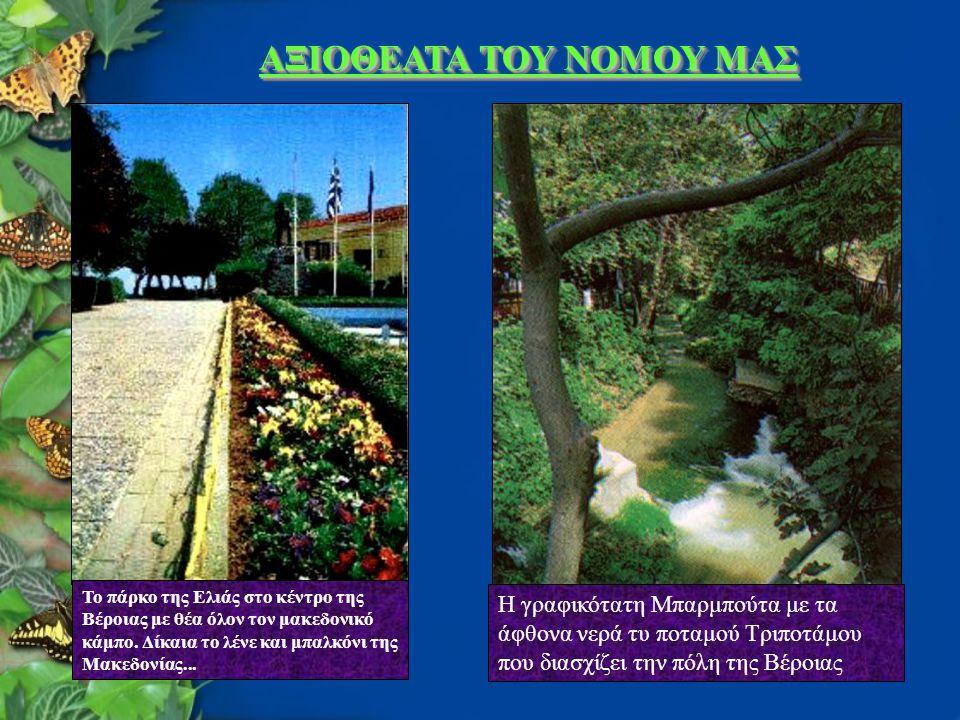 ΑΞΙΟΘΕΑΤΑ ΤΟΥ ΝΟΜΟΥ ΜΑΣ Η γραφικότατη Μπαρμπούτα με τα άφθονα νερά τυ ποταμού Τριποτάμου που διασχίζει την πόλη της Βέροιας Το πάρκο της Ελιάς στο κέντρο της Βέροιας με θέα όλον τον μακεδονικό κάμπο.