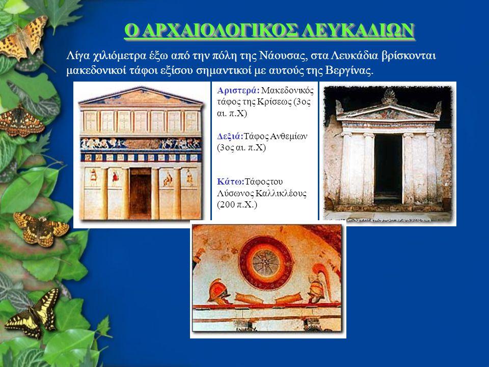 Ο ΑΡΧΑΙΟΛΟΓΙΚΟΣ ΛΕΥΚΑΔΙΩΝ Λίγα χιλιόμετρα έξω από την πόλη της Νάουσας, στα Λευκάδια βρίσκονται μακεδονικοί τάφοι εξίσου σημαντικοί με αυτούς της Βεργίνας.