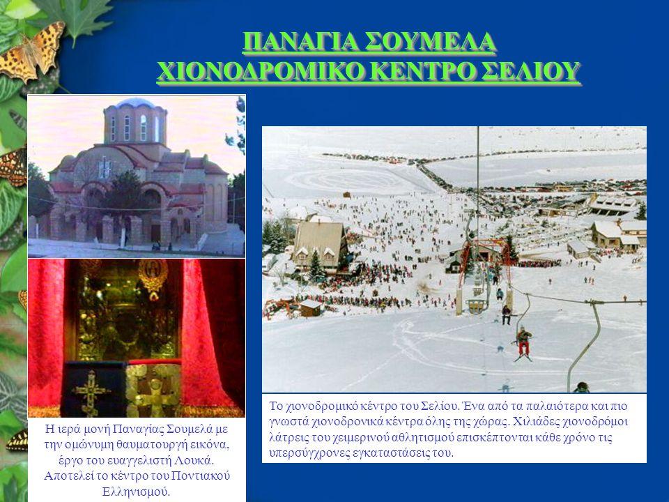 ΠΑΝΑΓΙΑ ΣΟΥΜΕΛΑ ΧΙΟΝΟΔΡΟΜΙΚΟ ΚΕΝΤΡΟ ΣΕΛΙΟΥ Η ιερά μονή Παναγίας Σουμελά με την ομώνυμη θαυματουργή εικόνα, έργο του ευαγγελιστή Λουκά.