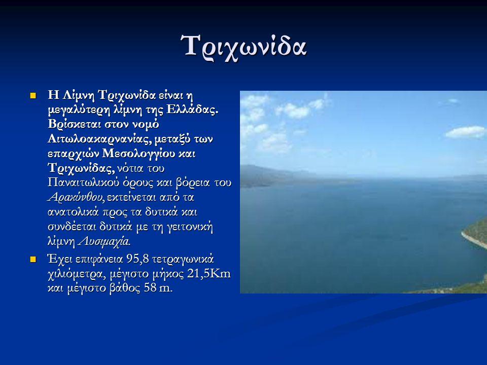 Τριχωνίδα Η Λίμνη Τριχωνίδα είναι η μεγαλύτερη λίμνη της Ελλάδας. Βρίσκεται στον νομό Αιτωλοακαρνανίας, μεταξύ των επαρχιών Μεσολογγίου και Τριχωνίδας