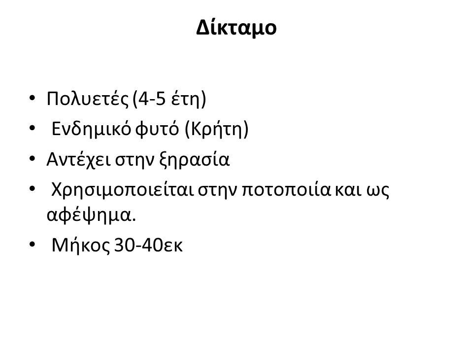 Δίκταμο Πολυετές (4-5 έτη) Ενδημικό φυτό (Κρήτη) Αντέχει στην ξηρασία Χρησιμοποιείται στην ποτοποιία και ως αφέψημα. Μήκος 30-40εκ