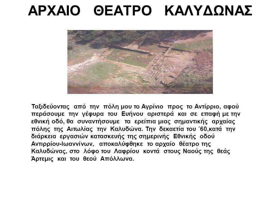 Η πρώτη ανασκαφή για το θέατρο των Οινιαδών έγινε από τον αμερικανό αρχαιολόγο B.