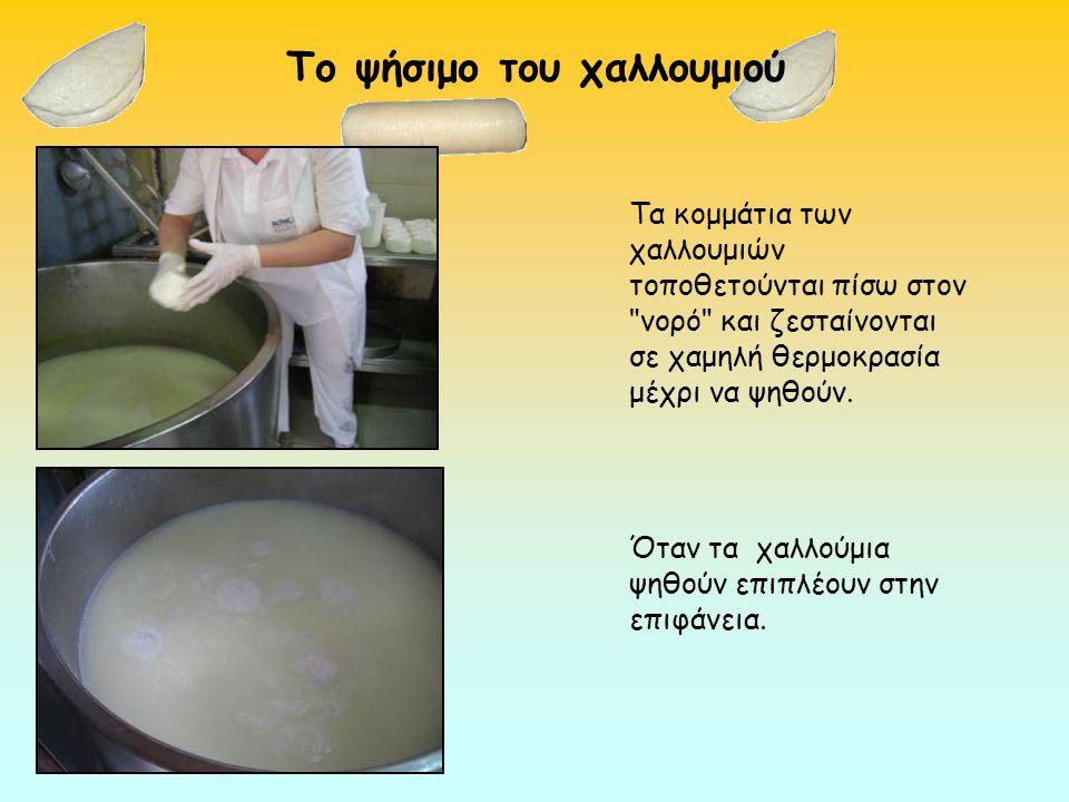 Tο αλάτισμα των χαλλουμιών Αφού κρυώσουν τα χαλλούμια, αλατίζονται και προσθέτουν το δυόσμο.