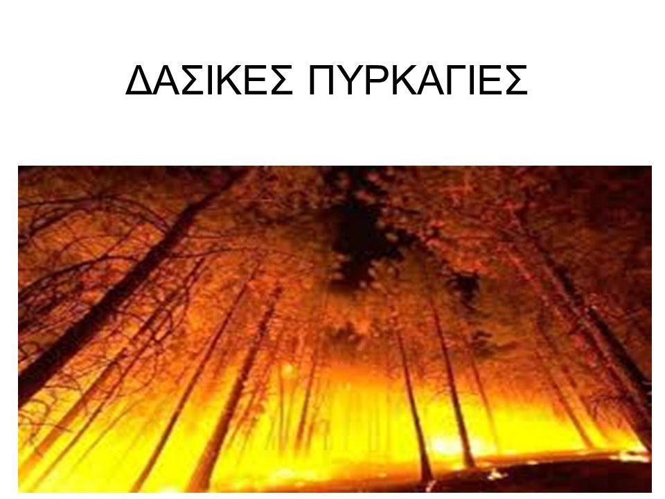 ΔΑΣΙΚΕΣ ΠΥΡΚΑΓΙΕΣ