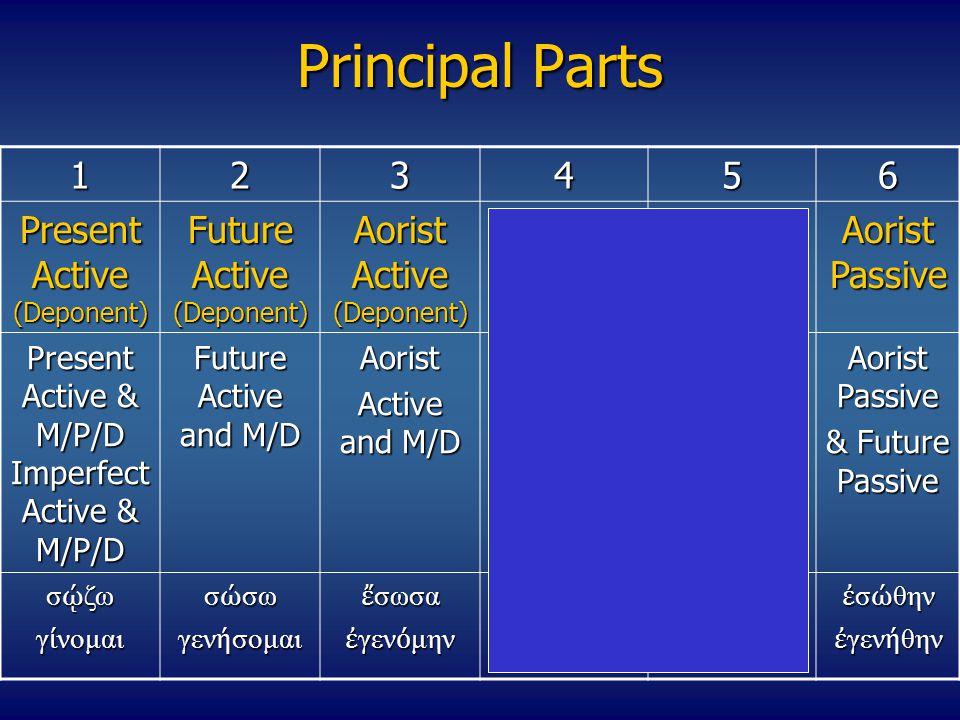 Lesson 16 Vocabulary Vocabulary