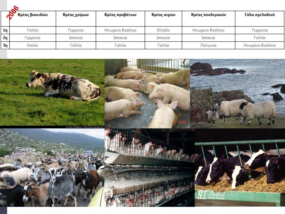 κτηνοτροφία  Μεσογειακή ζώνη: (ορεινό ανάγλυφο, ξηρό, ζεστό κλίμα) εκτρέφονται με εκτατική κτηνοτροφία μικρόσωμα ζώα, ενώ στις λιγοστές πεδινές περιοχές της ζώνης αυτής, όπου υπάρχουν μεγάλης έκτασης βοσκότοποι και νερό, εκτρέφονται μεγαλόσωμα ζώα.