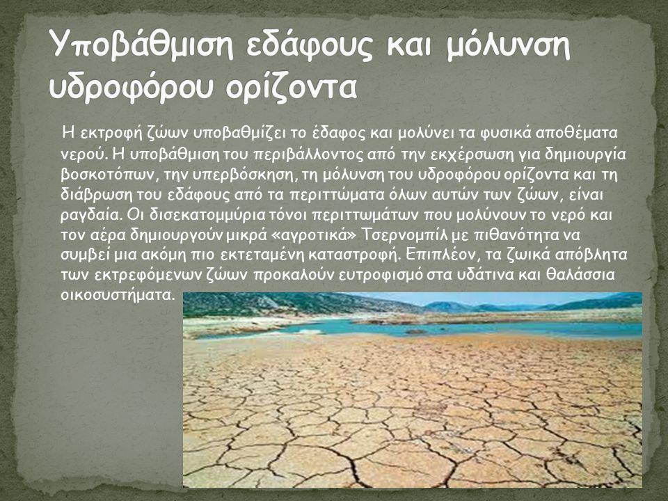 Η εκτροφή ζώων υποβαθμίζει το έδαφος και μολύνει τα φυσικά αποθέματα νερού. Η υποβάθμιση του περιβάλλοντος από την εκχέρσωση για δημιουργία βοσκοτόπων