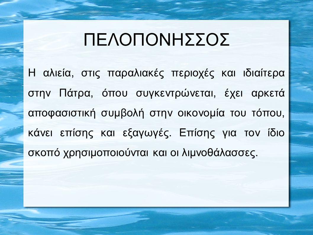 ΠΕΛΟΠΟΝΗΣΣΟΣ Η αλιεία, στις παραλιακές περιοχές και ιδιαίτερα στην Πάτρα, όπου συγκεντρώνεται, έχει αρκετά αποφασιστική συμβολή στην οικονομία του τόπ