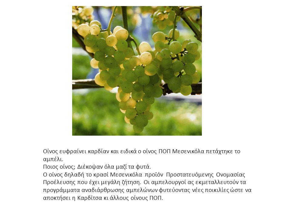Οίνος ευφραίνει καρδίαν και ειδικά ο οίνος ΠΟΠ Μεσενικόλα πετάχτηκε το αμπέλι.