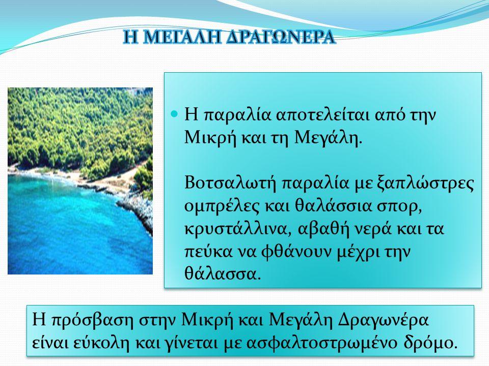 Η παραλία αποτελείται από την Μικρή και τη Μεγάλη. Βοτσαλωτή παραλία με ξαπλώστρες ομπρέλες και θαλάσσια σπορ, κρυστάλλινα, αβαθή νερά και τα πεύκα να