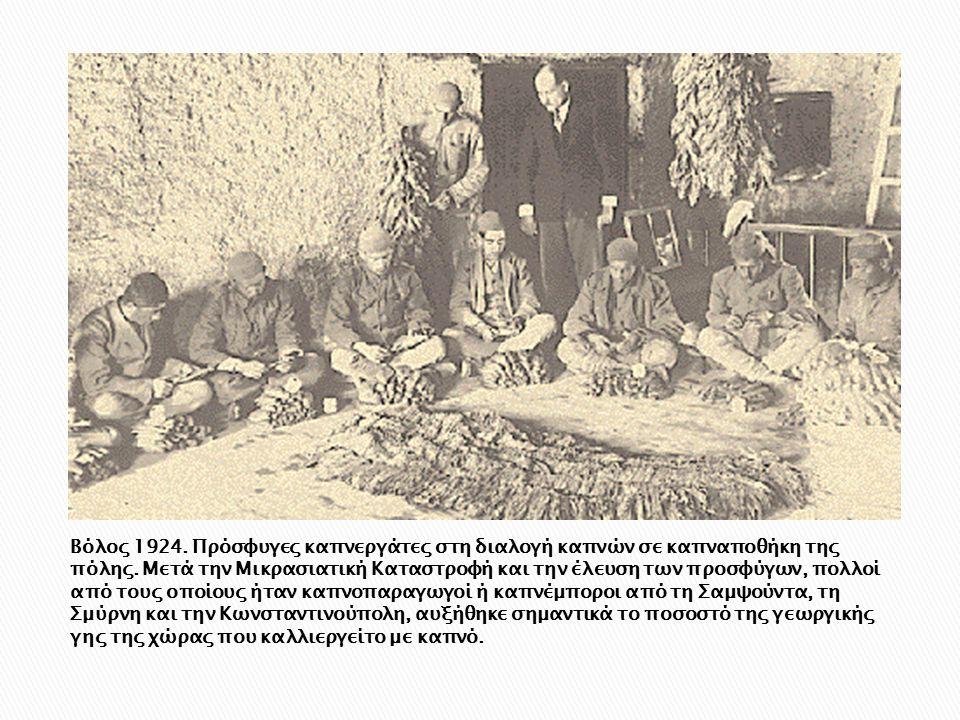 Βόλος 1924. Πρόσφυγες καπνεργάτες στη διαλογή καπνών σε καπναποθήκη της πόλης. Μετά την Μικρασιατική Καταστροφή και την έλευση των προσφύγων, πολλοί α