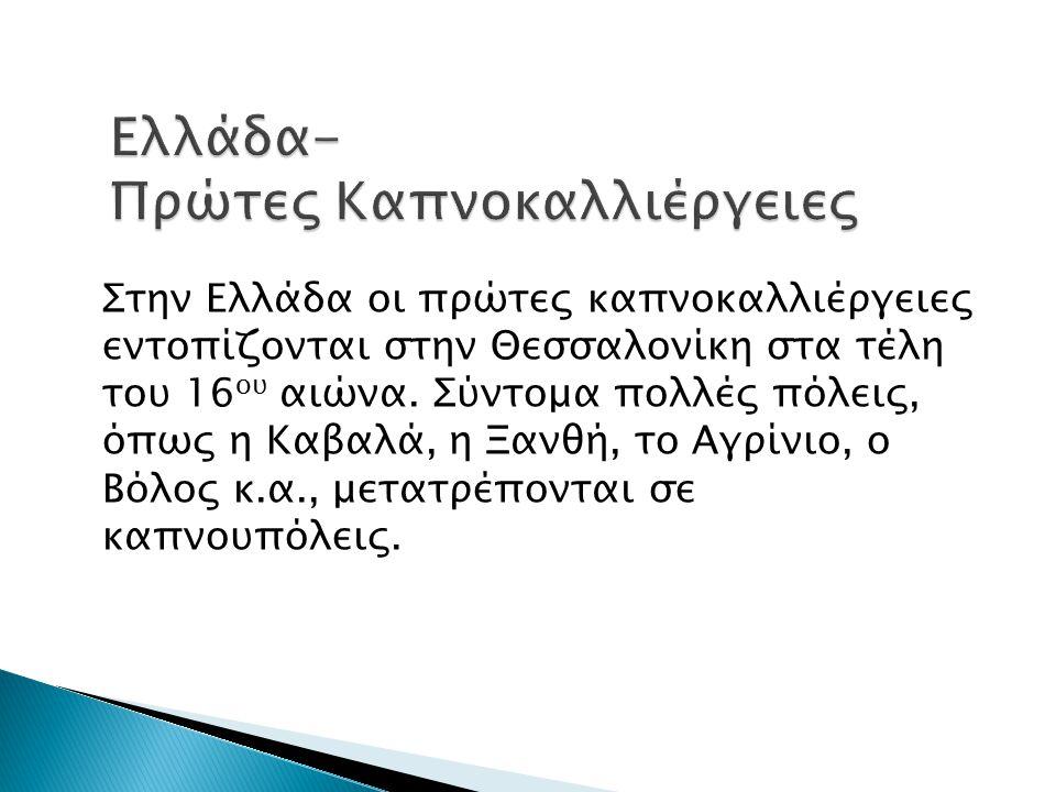 Στην Ελλάδα οι πρώτες καπνοκαλλιέργειες εντοπίζονται στην Θεσσαλονίκη στα τέλη του 16 ου αιώνα. Σύντομα πολλές πόλεις, όπως η Καβαλά, η Ξανθή, το Αγρί