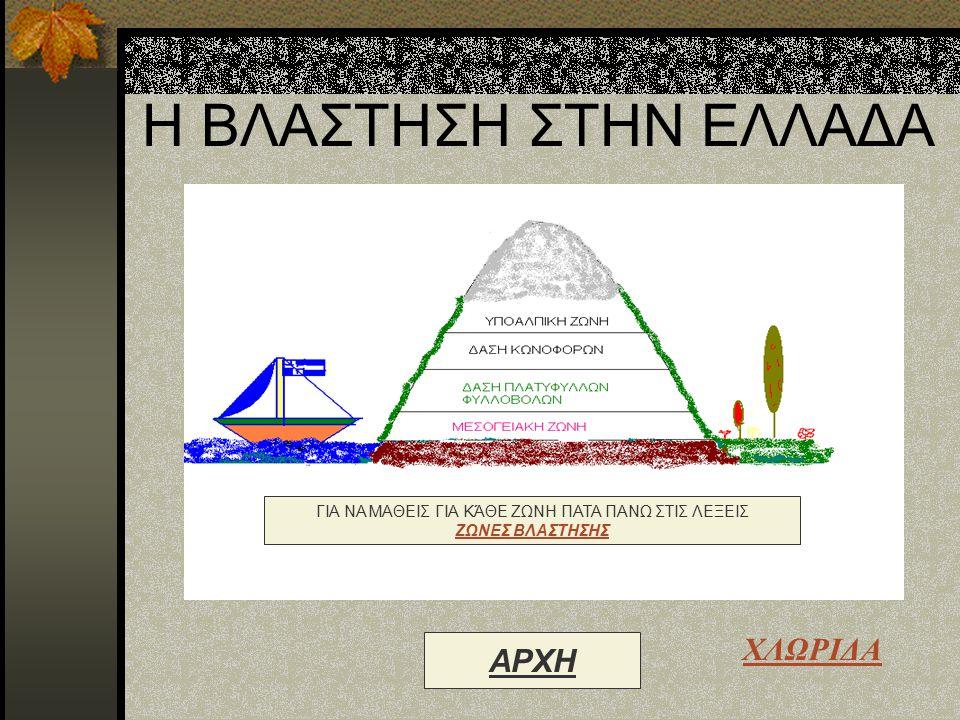 ΒΟΗΘΕΙΑ Για να περιηγηθείς στη Γεωγραφία της Ελλάδας σύρε το βελάκι πάνω στις υπογραμμισμένες λέξεις και τότε θα παρουσιαστεί ένα χεράκι. Μόλις δεις τ