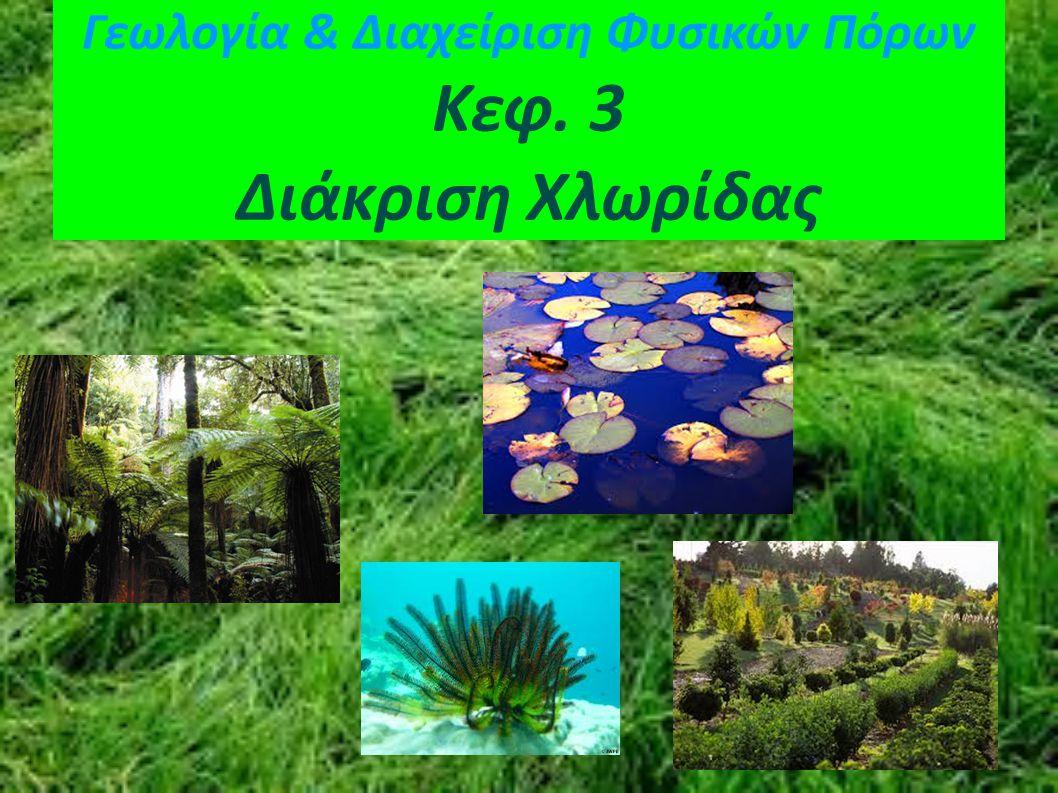 Διάκριση Χλωρίδας Χλωρίδα γλυκού νερού Η χλωρίδα γλυκού νερού είναι το σύνολο των φυτών που αναπτύσσονται σε ποταμούς, λίμνες και γενικότερα σε γλυκά νερά.