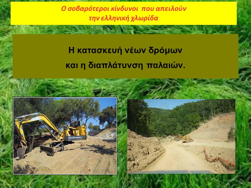 Η κατασκευή νέων δρόμων και η διαπλάτυνση παλαιών. Ο σοβαρότεροι κίνδυνοι που απειλούν την ελληνική χλωρίδα