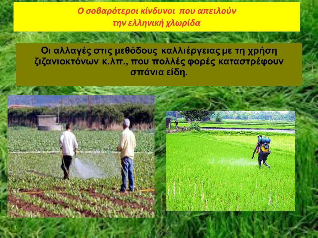Οι αλλαγές στις μεθόδους καλλιέργειας με τη χρήση ζιζανιοκτόνων κ.λπ., που πολλές φορές καταστρέφουν σπάνια είδη. Ο σοβαρότεροι κίνδυνοι που απειλούν