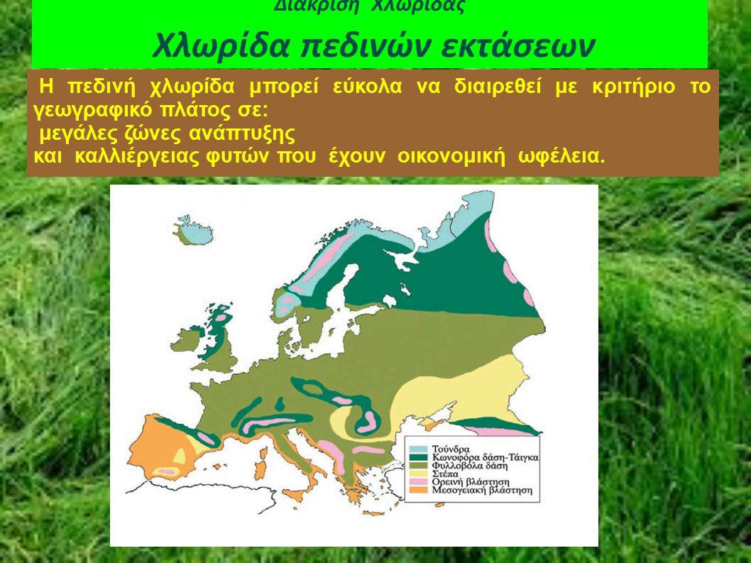 Διάκριση Χλωρίδας Χλωρίδα πεδινών εκτάσεων Η πεδινή χλωρίδα μπορεί εύκολα να διαιρεθεί με κριτήριο το γεωγραφικό πλάτος σε: μεγάλες ζώνες ανάπτυξης κα