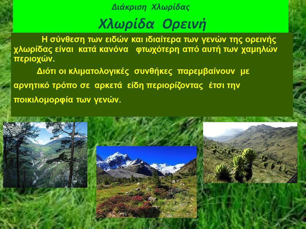 Διάκριση Χλωρίδας Χλωρίδα Ορεινή Η ορεινή χλωρίδα μπορεί να διαιρεθεί σε μεσοορεινή που καταλαμβάνει τις επικλινείς εκτάσεις κάτω από τη γραμμή ξυλείας.