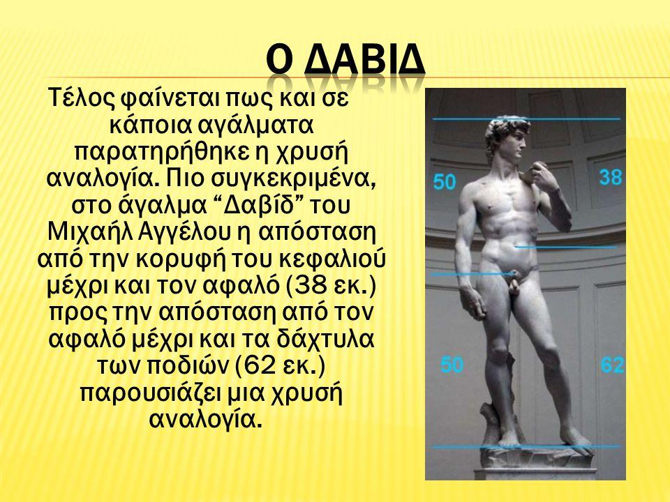 """Τέλος φαίνεται πως και σε κάποια αγάλματα παρατηρήθηκε η χρυσή αναλογία. Πιο συγκεκριμένα, στο άγαλμα """"Δαβίδ"""" του Μιχαήλ Αγγέλου η απόσταση από την κο"""