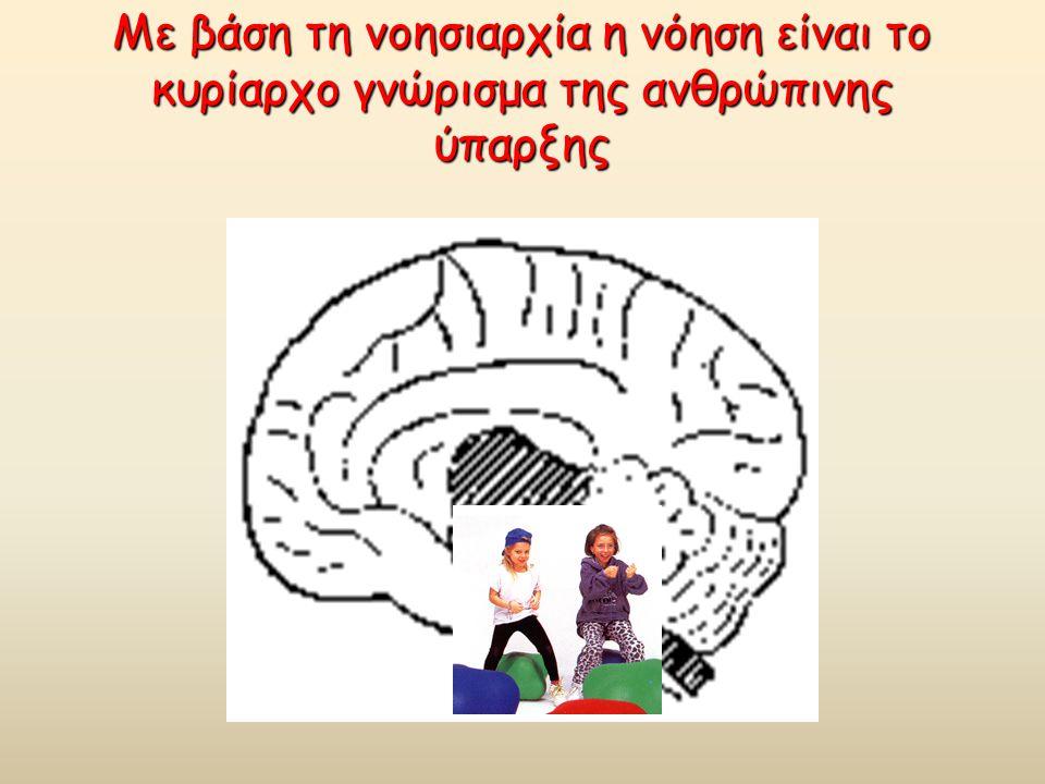 Με βάση τη νοησιαρχία η νόηση είναι το κυρίαρχο γνώρισμα της ανθρώπινης ύπαρξης