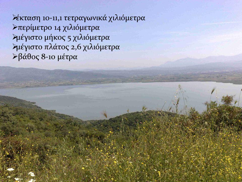  έκταση 10-11,1 τετραγωνικά χιλιόμετρα  περίμετρο 14 χιλιόμετρα  μέγιστο μήκος 5 χιλιόμετρα  μέγιστο πλάτος 2,6 χιλιόμετρα  βάθος 8-10 μέτρα