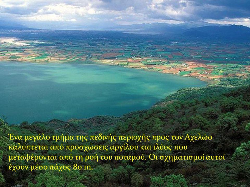 Ένα μεγάλο τμήμα της πεδινής περιοχής προς τον Αχελώο καλύπτεται από προσχώσεις αργίλου και ιλύος που μεταφέρονται από τη ροή του ποταμού.