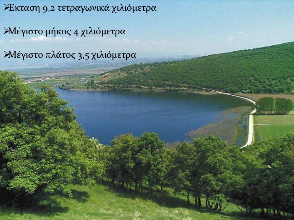ΈκτασηΈκταση 9,2 χλμ29,2 χλμ2 Μέγιστο μήκοςΜέγιστο μήκος 4 χλμ4 χλμ Μέγιστο πλάτοςΜέγιστο πλάτος 3,5 χλμ3,5 χλμ  Έκταση 9,2 τετραγωνικά χιλιόμετρα  Μέγιστο μήκος 4 χιλιόμετρα  Μέγιστο πλάτος 3,5 χιλιόμετρα