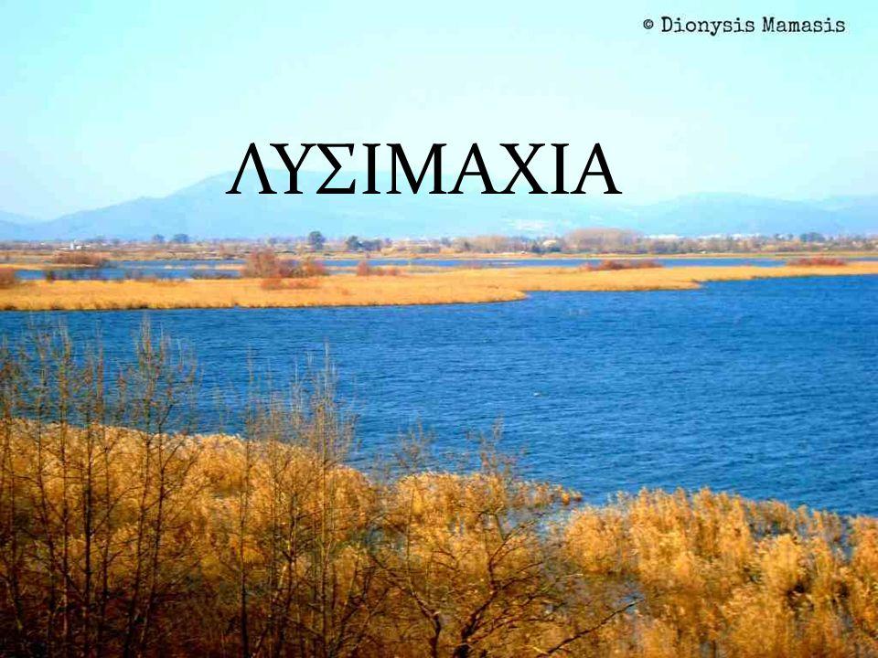 Η λίμνη υπήρχε από την αρχαιότητα και αναφέρεται από τον Στράβωνα,με το όνομα Μυρτούντιον.Κοντά στις όχθες της λίμνης βρίσκονταν οι αρχαίες πόλεις Ανακτόριο και Πάλαιρος.