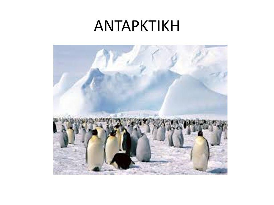 ΤΡΥΠΑ ΤΟΥ ΟΖΟΝΤΟΣ Η τρύπα του όζοντος βρίσκεται στην Ανταρκτική!!.