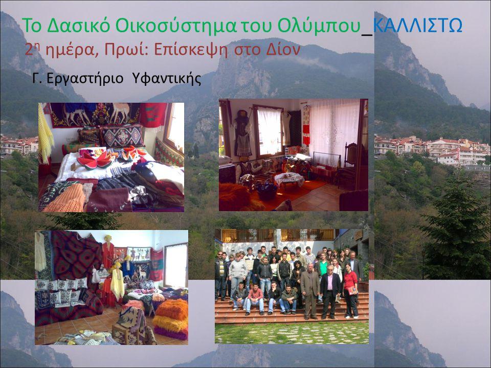 Το Δασικό Οικοσύστημα του Ολύμπου_ΚΑΛΛΙΣΤΩ 2 η ημέρα, Απόγευμα: Καταφύγιο «Σταυρός» Ολύμπου Ενημέρωση από Ορειβατικό Σύλλογο Λιτόχωρου Πεζοπορία στο μονοπάτι που οδηγεί στη «Νερομάνα» Συλλογή φωτογραφιών από τη χλωρίδα της περιοχής