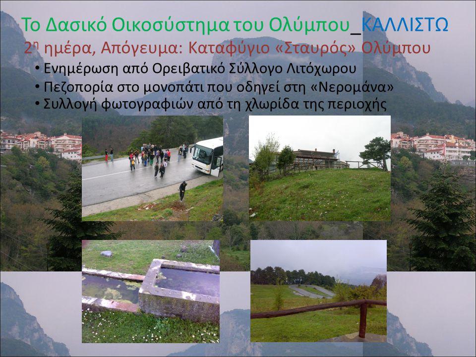 Το Δασικό Οικοσύστημα του Ολύμπου_ΚΑΛΛΙΣΤΩ 3 η ημέρα, Απόγευμα: Επίσκεψη στον Ιππικό Όμιλο Λιτοχώρου