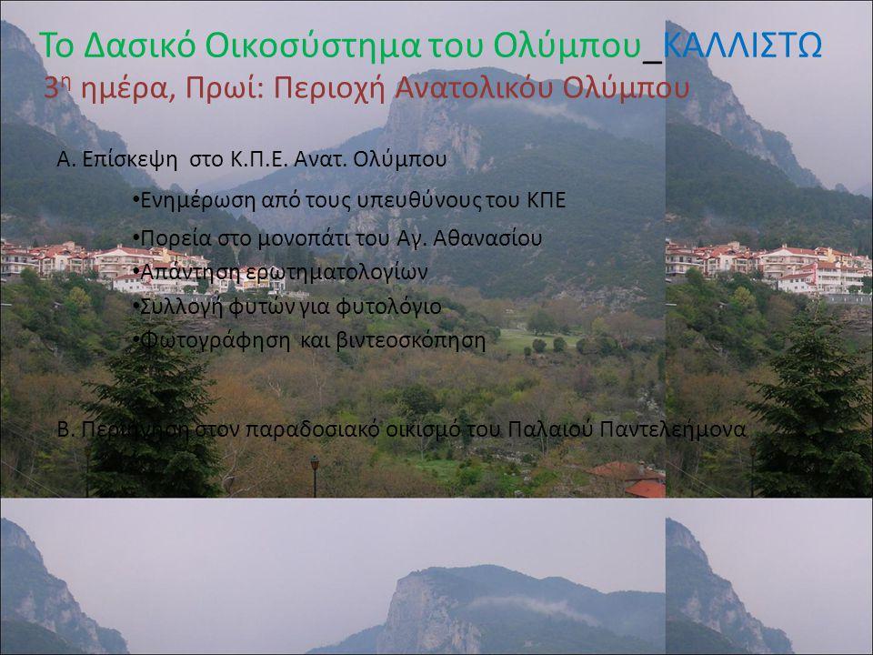 Φύλλα Εργασίας: http://www.wwf.gr/index.php?option=content&task=view&id=511 Πηγές: http://kpe-kastor.kas.sch.gr/dasos/: Ερωτηματολόγιο : Παρατήρηση Δασών, Πρόγραμμα «Τα Δάση γύρω από τη Μεσόγειο Φύλλα εργασίας ΚΠΕ Καστοριάς Το Δασικό Οικοσύστημα του Ολύμπου_ΚΑΛΛΙΣΤΩ 3 η ημέρα, Πρωί: Περιοχή Ανατολικόυ Ολύμπου Α.