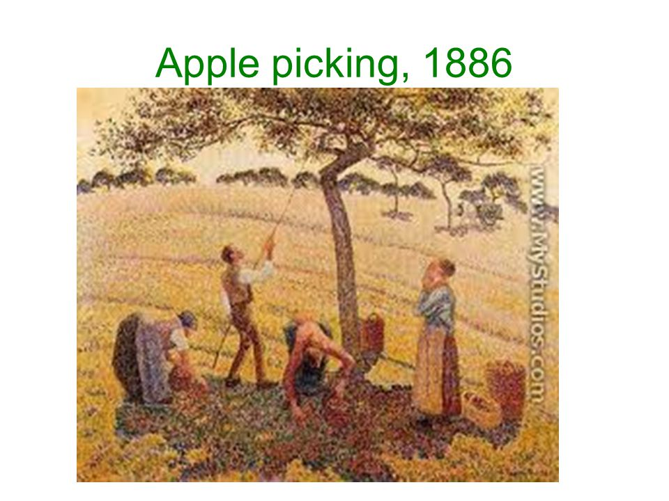 Apple picking, 1886