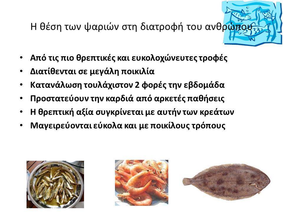 Η θέση των ψαριών στη διατροφή του ανθρώπου Από τις πιο θρεπτικές και ευκολοχώνευτες τροφές Διατίθενται σε μεγάλη ποικιλία Κατανάλωση τουλάχιστον 2 φο