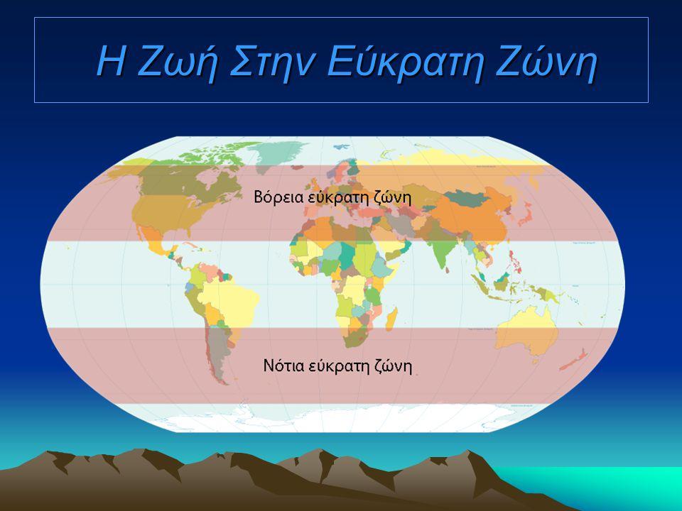 Τα ζώα της Εύκρατης ζώνης Η Εύκρατη ζώνη έχει πλούσια πανίδα όπως Αετός Ελάφι Βίσωνας και άλλα