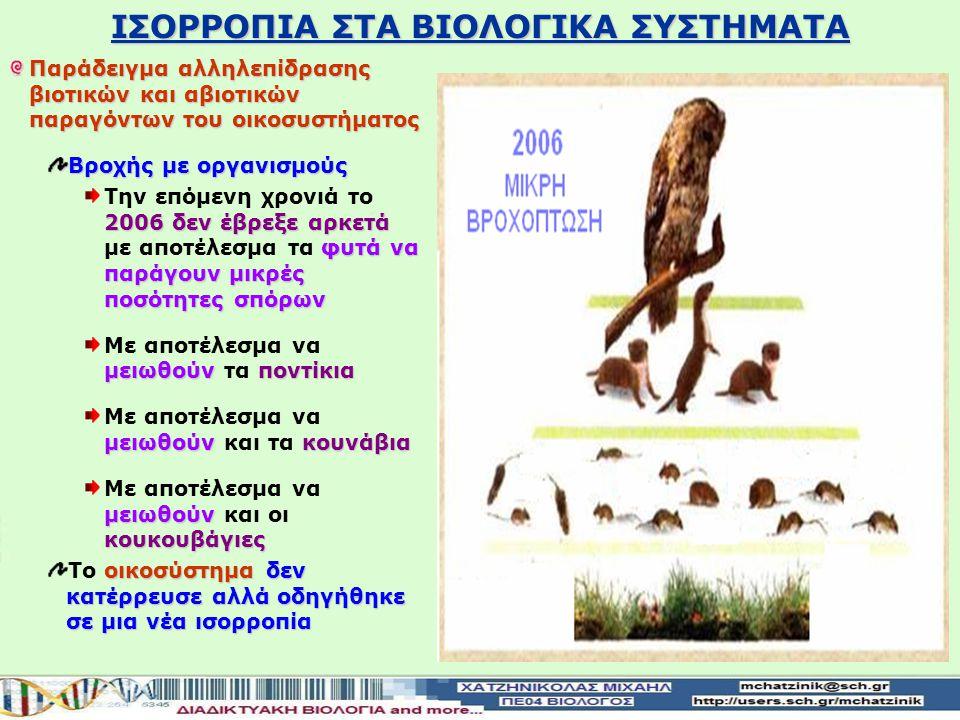 ΙΣΟΡΡΟΠΙΑ ΣΤΑ ΒΙΟΛΟΓΙΚΑ ΣΥΣΤΗΜΑΤΑ Παράδειγμα αλληλεπίδρασης βιοτικών και αβιοτικών παραγόντων του οικοσυστήματος Βροχής με οργανισμούς 2005 έβρεξε αρκ