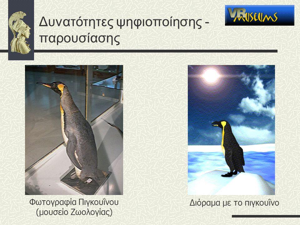 Δυνατότητες ψηφιοποίησης - παρουσίασης Διόραμα με το πιγκουΐνο Φωτογραφία Πιγκουΐνου (μουσείο Ζωολογίας)