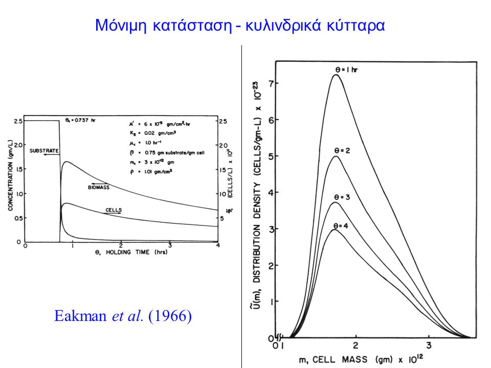 Μόνιμη κατάσταση - κυλινδρικά κύτταρα Eakman et al. (1966)