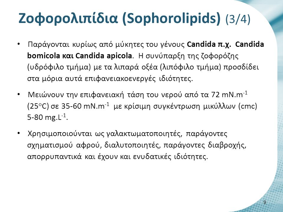 Zοφορολιπίδια (Sophorolipids) (3/4) Παράγονται κυρίως από μύκητες του γένους Candida π.χ. Candida bomicola και Candida apicola. Η συνύπαρξη της ζοφορό