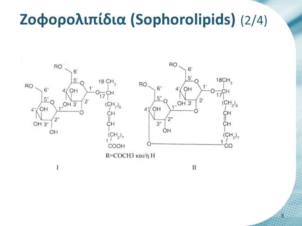Zοφορολιπίδια (Sophorolipids) (2/4) 8